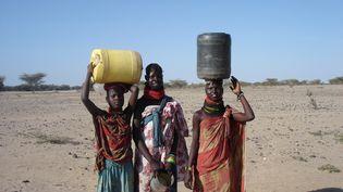 Femmes au Kenya rapportant de l'eau (Michael D'Hondt)