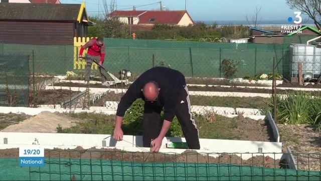 """Confinement : les jardins partagés pour se """"changer l'esprit"""""""