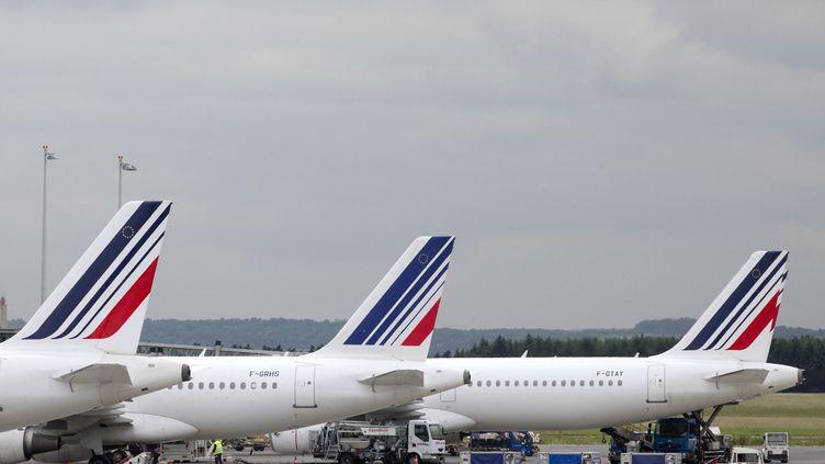 Des avions de la flotte Air France, à Roissy (Val-d'Oise), le 1er juin 2012. (JOEL SAGET / AFP)