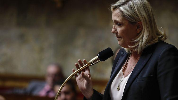Marine Le Pen, lors d'une session de questions au gouvernement, à l'Assemblée nationale, à Paris, le 5 novembre 2019. (THOMAS SAMSON / AFP)