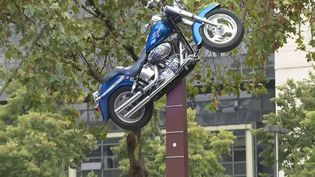 Paris : une esplanade renommée en hommage à Johnny Hallyday (France 3)