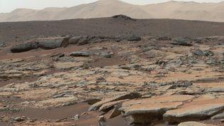 Une vue de Mars prise par le robot Curiosity le 9 décembre 2013. (HO / NASA/JPL-CALTECH/MSSS)
