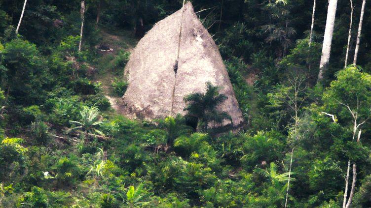 Une image d'une habitation en chaume, dans le sud-ouest de l'Amazonie. La photo a été prise au drone en 2017, mais n'a été dévoilée par laFondation nationale brésilienne pour l'indien que le 21 août 2018. (ADAM MOL / NATIONAL INDIAN FOUNDATION / AFP)