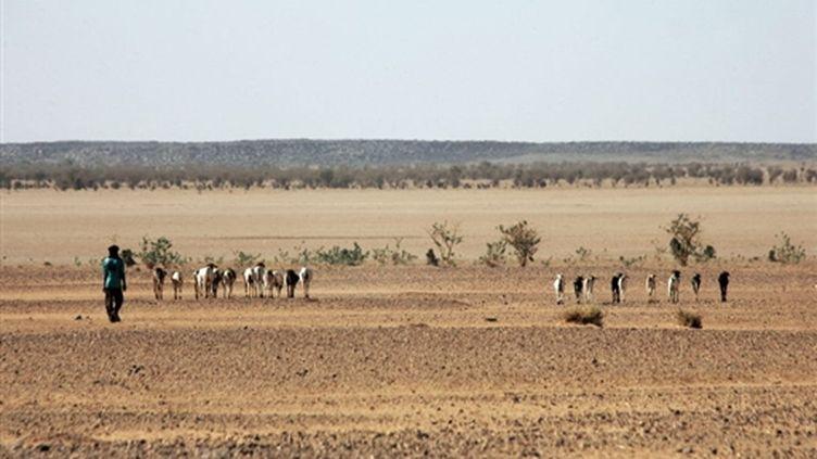 Dans le désert nigérien, entre Agadez and Arlit, à 850 km au nord de Niamey, la capitale du pays (AFP - PIERRE VERDY)