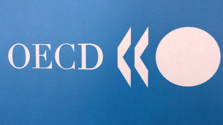 L'Organisation de coopération et de développement économiques (OCDE) a publié des indicateurs sur l'économie de la France notamment, le 11 juin 2012. (JEAN AYISSI / AFP)