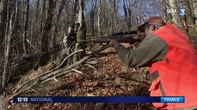 Lozère : extension de la chasse pour lutter contre les sangliers