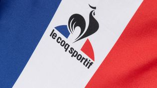 Le logo de la marque dont l'usine est à Romilly-sur-Seine dans l'Aube. (DAVID ADEMAS / MAXPPP)