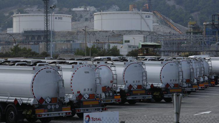 La FNSEA et les Jeunes agriculteurs appellent au blocage des raffineries dans toute la France à partir du 10 juin pour protester notamment contre la hausse attendue des importations d'huile de palme utilisées dans la raffinerie Total de La Mède, dans les Bouches-du-Rhône (ci-contre). (LAUNETTE FLORIAN / MAXPPP)