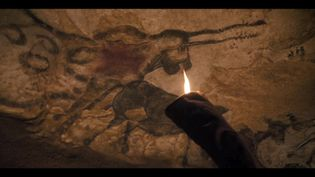 Découverte des peintures de Lascaux en 3D (France 3 Aquitaine)