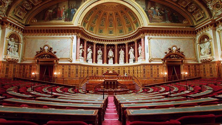 L'hémicycle du Sénat (JEAN-PIERRE MULLER / AFP)
