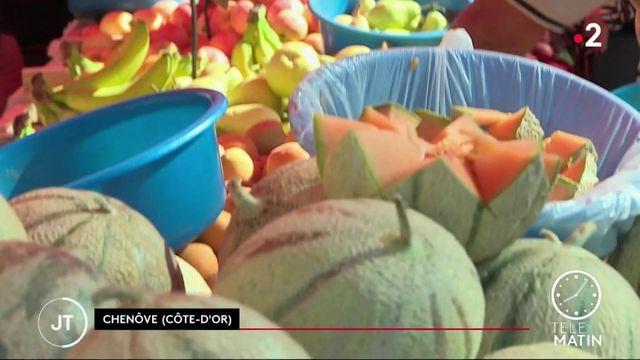 Canicule: se nourrir autrement avec des fruits et légumes