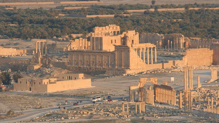Lesruines de la ville antique de Palmyre (Syrie) située sur une oasis dans le désert, le 13 avril 2010. (CITIZENSIDE / ANTOINE MATEOS / AFP)