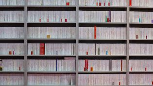Selon l'étude commandée par le ministère de la Culture et dévoilée à l'occasion de la 36e éditon du salon du livre de Paris, les auteurs français ont de plus en plus de mal à vivre de leur plume  (ROMUALD MEIGNEUX/SIPA)