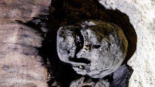 """Toutes les momies """"sont en bon état de conservation"""", assure le ministère égyptien des Antiquités. (MOHAMED EL-SHAHED / AFP)"""