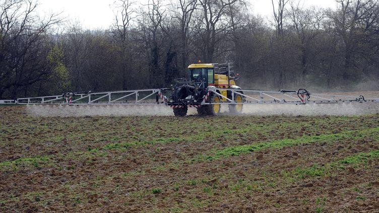 Un agriculteur épand des pesticides, le 3 avril 2015 à Villefrance-de-Lauragais (Haute-Garonne). (REMY GABALDA / AFP)