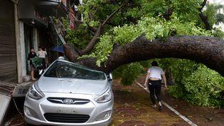 Les dégâts provoqués par la tornade Mirinae à Hanoï (Vietnam), le 28 juillet 2016. (HOANG DINH NAM / AFP)