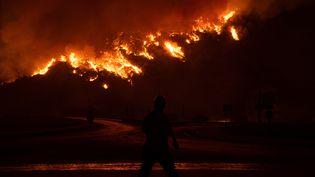 Les pompiers turcs luttent contre les flammes non loin d'une centrale à charbon, à Oren, au sud-ouest de la Turquie. (YASIN AKGUL / AFP)