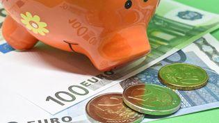 Une tirelire en forme de cochon sur des euros en pièces et en billets. Photo d'illustration. (JEAN-LUC FLEMAL / MAXPPP)