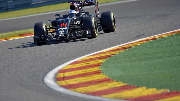 Alonso à Spa-Francorchamps (LOIC VENANCE / AFP)
