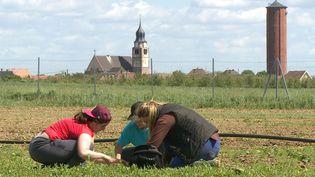 Des habitantes d'Ungersheim, le village alsacien qui s'est mis au vert  (M2R Films /Allo ciné)