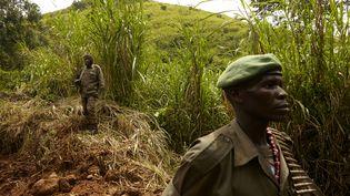 Des soldats de l'armée congolaise patrouillent dans le territoire de Rutshuru, le 5 mai 2018. Une zone en proie aux attaques des groupes armés dans le Nord-Kivu. (ALEX MCBRIDE / AFP)