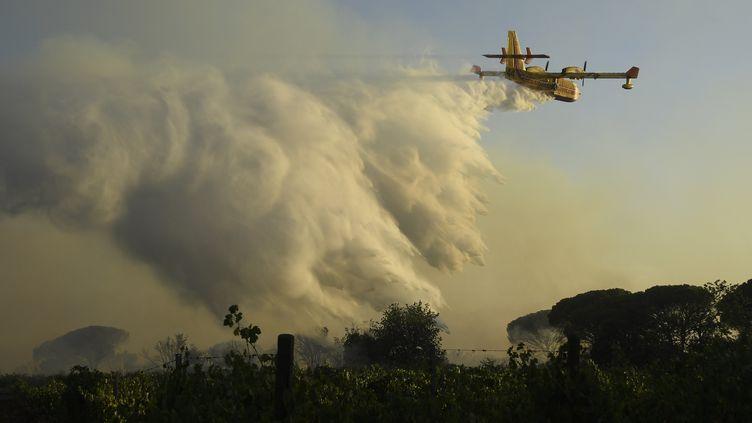 Un Canadair CL 415 essaie de réduire un violent feu de forêt près de Gonfaron dans le Var, le 17 août 2021. Des milliers de personnes, touriste et locaux, ont été évacuées. 750 pompiers on été mobilisés. (NICOLAS TUCAT / AFP)