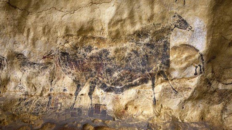 Johannesburg accueille les fac-similés de la célèbre grotte de Montignac. (Philippe Roy/Aurimages )