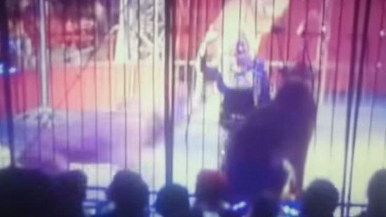 Faten El-Helw, célèbre dresseuse de fauves égyptienne, est attaquée par un de ses félins lors d'un numéro de cirque à Tanta (Egypte). ( YOUTUBE)
