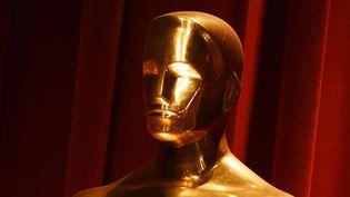 Qui sont les membres de l'Académie des Oscars en 2016 ? En grande majorité des hommes, blancs, et plutôt âgés.  (Mark Ralston / AFP)