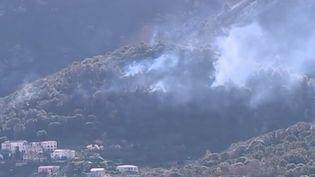 En Corse, des incendies ont déjà détruit plus de 1 200 hectares. Les pompiers tentent de limiter les dégâts. (FRANCE 2)