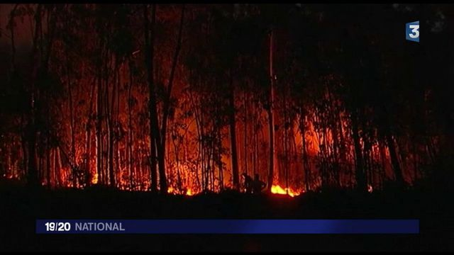 Incendies au Portugal et en Espagne : des scénarios apocalyptiques