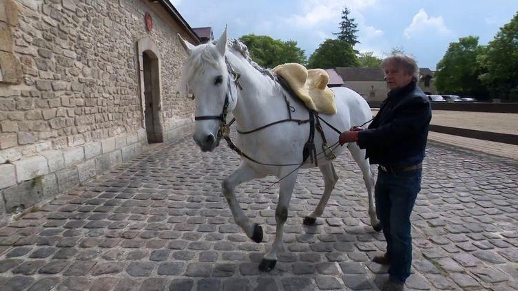 Mario Luraschi avec Quijote (France 3 Picardie / E. Ramirez)