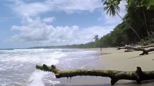 Le Costa Rica, pays tropical extrêmement préservé, attire de plus en plus de touristes pour ses jolies plages et ses forêts luxuriantes. (FRANCE 2)