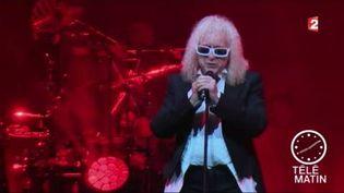 Michel Polnareff en plein concert. (France 2)