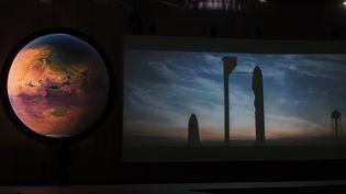 """Capture d'écran de la vidéo diffusée le 27 décembre 2016 à Guadalajara (Mexique) par Elon Musk. Le fondateur de Space X présenteson projet de """"système de transport interplanétaire"""", avec une """"navette"""" entre la Terre et Mars. (HECTOR-GUERRERO / AFP)"""