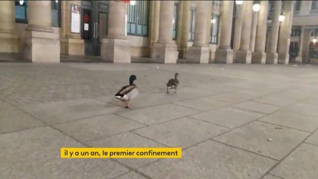 Covid-19 : il y a un an jour pour jour, le premier confinement débutait en France