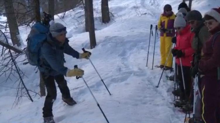 Pour ceux qui passent leurs vacances à la montagne, le chamois n'est pas qu'un trophée de ski. C'est surtout un animal sauvage vivant dans les massifs. Pour espérer retrouver ses traces et l'observer, il vaut mieux chausser des raquettes et partir en randonnée. (FRANCE 3)
