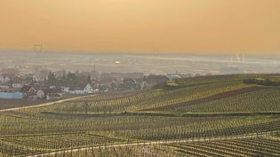 Des poussières désertiques colorent le ciel au dessus deWintzenheim (Haut-Rhin), le 24 février 2021. (MAXPPP)