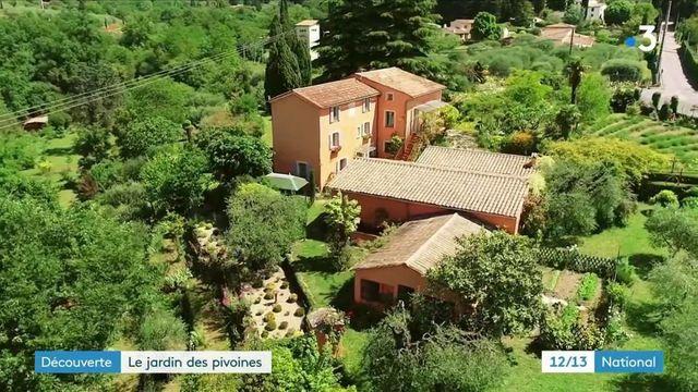 Alpes-Maritimes : à Grasse, le jardin de Marcel et Lucille est un hymne aux pivoines