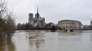 Vue de Paris, près deNotre-Dame,réalisée le 28 janvier 2018. (CHEN YICHEN / XINHUA / REUTERS)