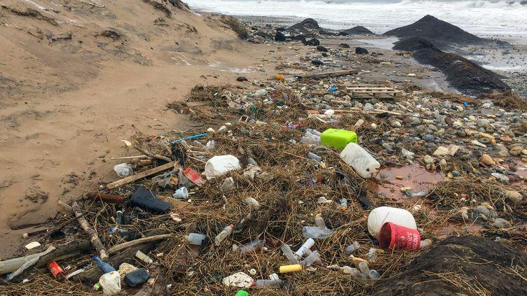 Des déchets plastiques sur une plage d'Agger, au Danemark, le 9 février 2018. (PATRICK PLEUL / DPA-ZENTRALBILD / AFP)