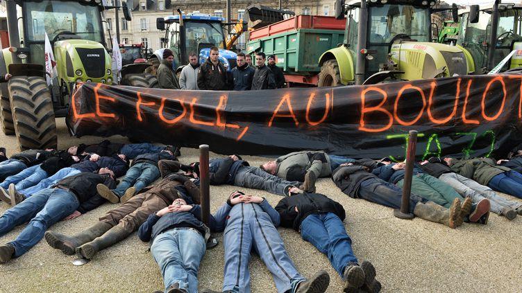 Des éleveurs manifestent au Mans (Sarthe), le 21 janvier 2016. (JEAN-FRANCOIS MONIER / AFP)