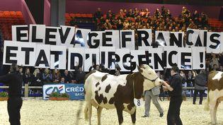 Des éleveurs affichent leur mécontentement lors d'un concours bovin au Salon de l'agriculture, le 28 février 2016 à Paris. (DOMINIQUE FAGET / AFP)