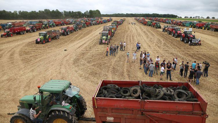 Journée de mobilisation d'agriculteurs près de Caen (Calvados), le 19 juillet 2015. (CHARLY TRIBALLEAU / AFP)