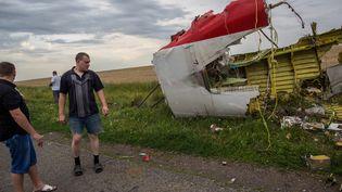 Le site du crash du Boeing 777 de Malaysian Airlines, dans la région de Donetsk (Ukraine), le 17 juillet. (ANDREY STENIN / RIA NOVOSTI / AFP)