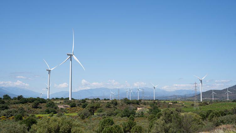 Des éoliennes à Caice (Pyrénées Orientales) le 7 juin 2021. (JEANNE MERCIER / HANS LUCAS / AFP)