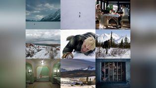 Exemple de neuf films sur la thématique de l'hiver, présentés sur Universciné - Janvier 2021 (CAPTURE D'ECRAN UNIVERSCINE)