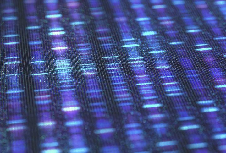 Séquençage d'ADN (AFP - KTSDESIGN/SCIENCE PHOTO LIBRARY / KTS)