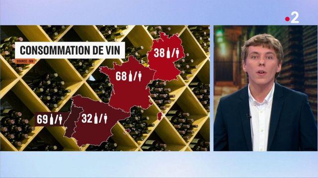 Consommation : les Français parmi les plus gros consommateurs de vin en Europe