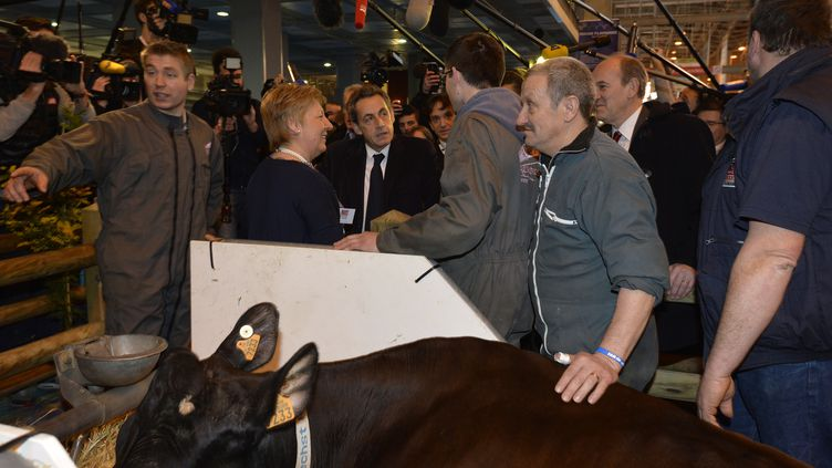 Le président de l'UMP, Nicolas Sarkozy, au Salon de l'agriculture, porte de Versailles, à Paris, le 25 février 2015. (MIGUEL MEDINA / AFP)